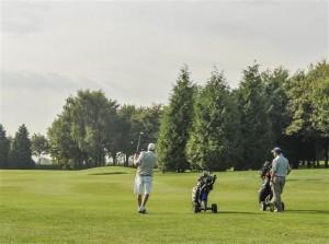 golf course 15