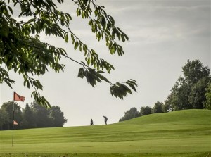 golf course 24