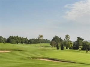 golf course 6