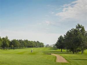 golf course 8